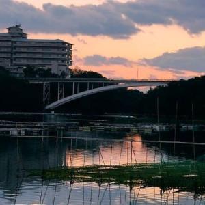 日没の入り江