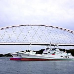 和具港の鰹船