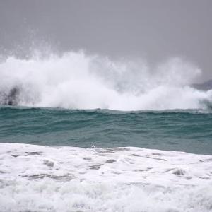 凄い迫力ある波
