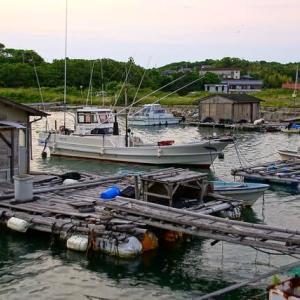 夕方の船溜まり