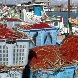 岸壁の海老網