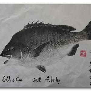 黒鯛の魚拓