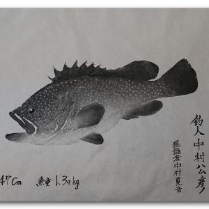 雉羽太の魚拓