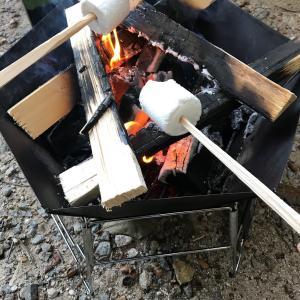 キャンプ場でウェラジュを使ってみた