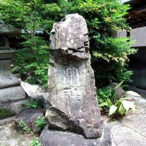茅の輪くぐりもマスクで 東大王 岡崎神社