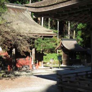 御神輿が凄かった 滋賀県・日吉大社