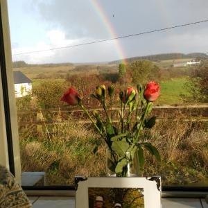激励の虹に応えて・・・母の命日に想う