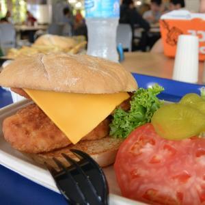 【オーランド旅行】ごはん事情に要注意!ディズニーワールド内で食べられるのはこんなもの。
