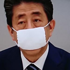 せっかく布マスクを配布するのならば…。