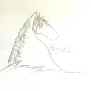 horse's  あとがき。