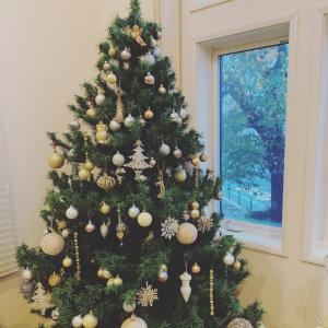 12月クリスマスレッスンメニューのお知らせ