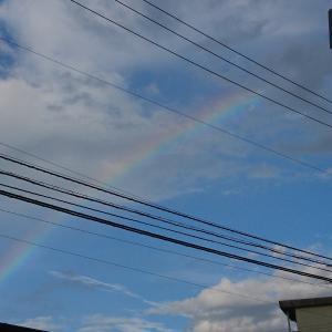 朝の散歩は虹を見ながら