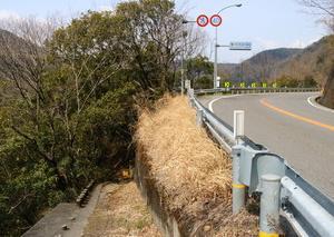 [沿線旅振り返り]土讃線坪尻駅への入り口