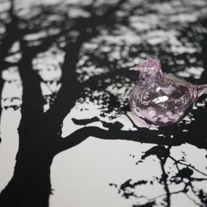 【スーパーSALE】続・ポチレポ!!猛烈な可愛さ♡我が家のピンクの小鳥(*´з`)