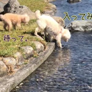 今季初 水遊び