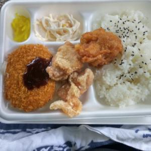 【お昼ごはん】公園で、唐コロ弁当~♪