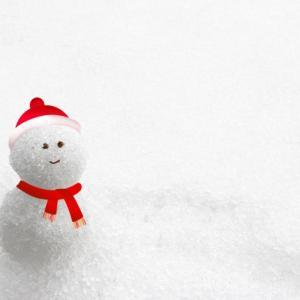え!!この時期に!!?東京多摩に大雪警報