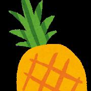 台湾パイナップルについて調べたらCAMPFIREに辿り着きました&プロジェクト参加の巻