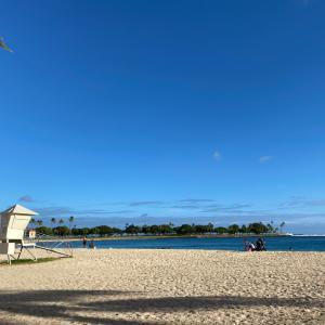 運動不足解消2 散歩でハワイ旅行気分を味わう!!