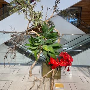 ハワイ草月流生花展示会@ノードストローム