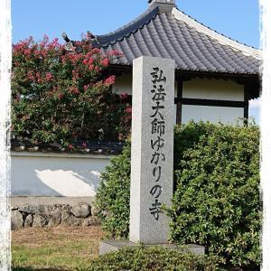 奈良明日香~川原寺跡(弘福寺)