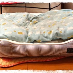 おニNewのベッド