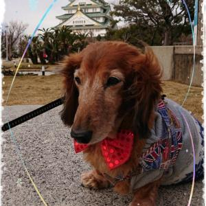 お誕生日デートは大阪城