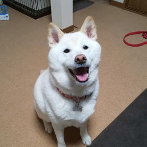 笑顔いっぱい(^^)