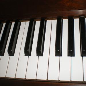 鍵盤楽器の練習