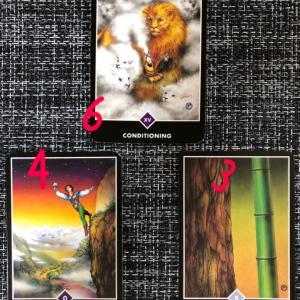 占い(数秘・カード)について