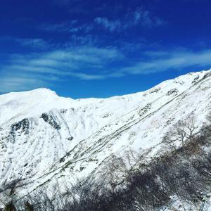 ▲谷川岳・清廉な雪の世界/百名山/2019年12月/雪山