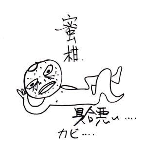 インスタ(兎男)