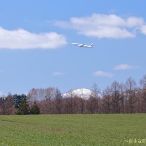 春のおとずれ ~旭川空港~