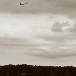 馬のいる風景 ~とかち帯広空港~