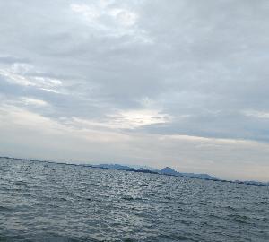 バス釣り(琵琶湖)