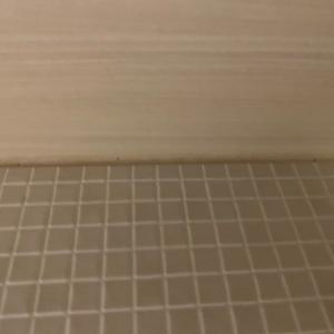 家を建てて4年半…お風呂に初めて出現した黒カビにショック!