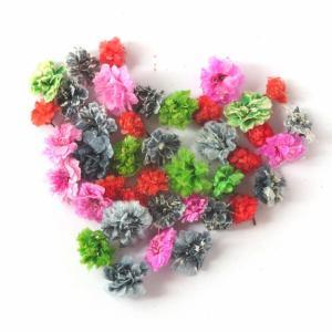 ハロウィンカラーは毒々しい色合いが可愛いかすみ草