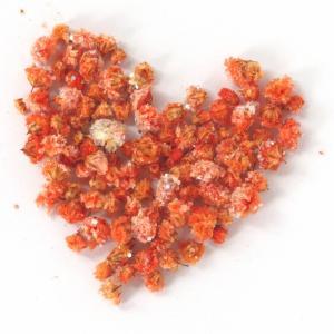 かすみ草ラメつきのオレンジのドライフラワー 数量限定商品です!