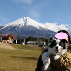 富士山ドライブ Part3♪