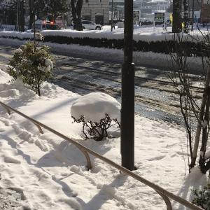 (雪やばし)