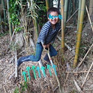 タケノコの常温1年保存の方法
