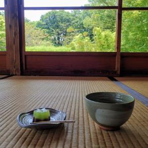 【抹茶が名産の城下町】愛知県・西尾を歩く