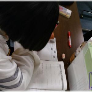 中学コース(中1~中3):地元高進学コース