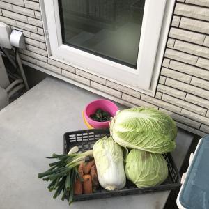収穫した野菜のための勝手口