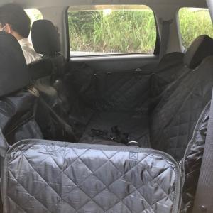 新しいドライブシート&ドッグラン♪