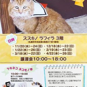 《すすきのラフィラ 》保護猫の譲渡会&ネコモノ市