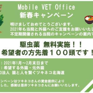 【Mobile Vet Office】様の新春キャンペーン。