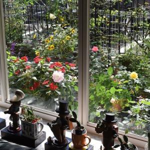 秋晴れの窓辺の ダフネとマチルダ!