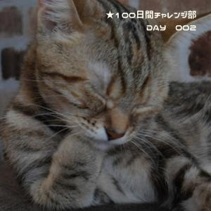 100日間チャレンジ部♡DAY2