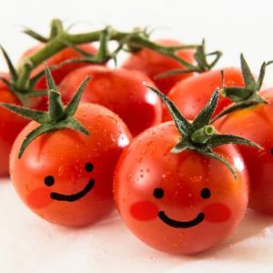 懐かしの『トマト小僧』。3代目がウチに来ることになりましたが、まずは初代の爆エピソード(笑)